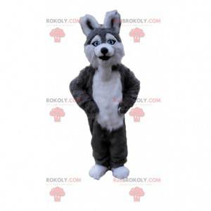 Husky dog mascot, gray and white wolfdog costume -