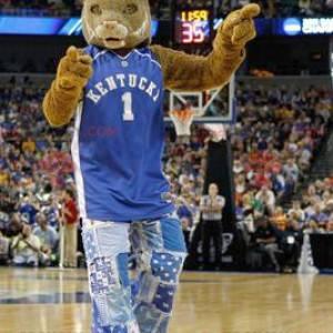 Zeer realistische bruine tijger mascotte - Redbrokoly.com