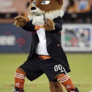 Mascota perro marrón y blanco todo peludo - Redbrokoly.com
