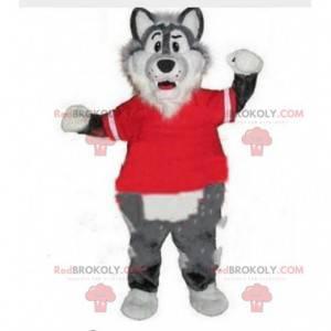 Maskot šedý a bílý vlk s červeným svetrem. Psí vlk -