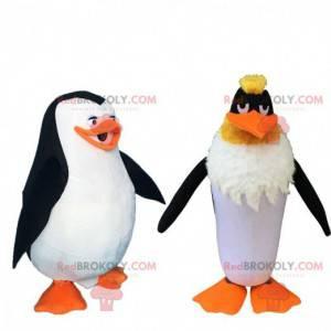 2 berühmte Cartoon-Maskottchen, ein Pinguin und ein Pinguin -