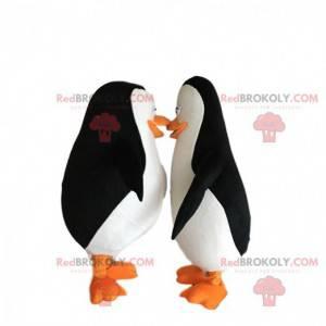 """2 maskoti tučňáci """"Tučňáci z Madagaskaru"""" - Redbrokoly.com"""