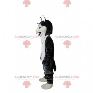 Black and white husky dog mascot, wolf dog costume -