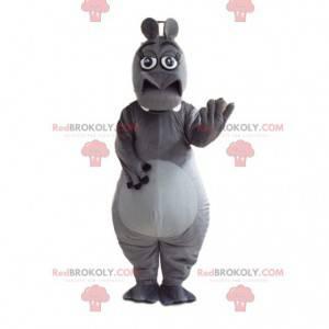 Mascote de Glória, o famoso hipopótamo do filme Madagascar -