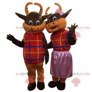 2 brown and orange cows dressed in colorful outfits -