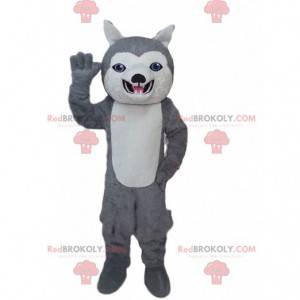 Šedý a bílý husky maskot, kostým psa s modrýma očima -