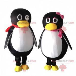 2 mascotes de pinguins pretos e brancos, um casal de pinguins -