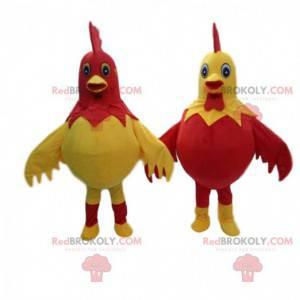 2 costumi di galli giganti e colorati, mascotte della fattoria