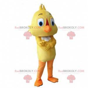 Traje canário, traje de pássaro amarelo, mascote amarelo -