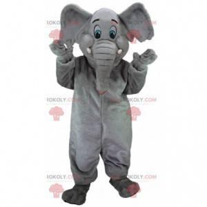 Grijze olifant mascotte met blauwe ogen, dikhuidige kostuum -