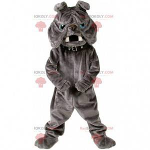 Maskot buldok, kostým plyšového šedého psa - Redbrokoly.com