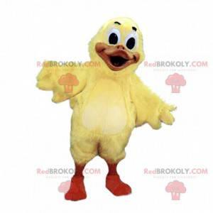 Mascot big yellow bird, canary, chick - Redbrokoly.com