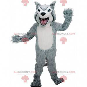Šedý a bílý husky maskot, kostým chlupatého vlka -