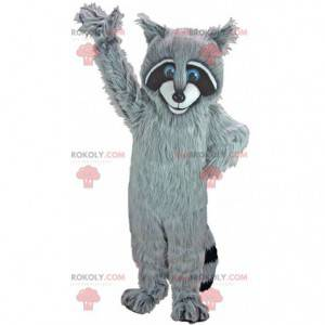 Mascota de mapache tricolor, con bonitos ojos azules -
