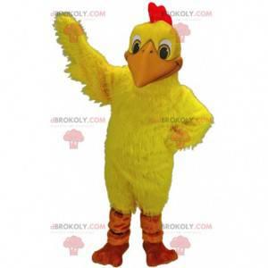Mascot gele kip, kippenkostuum, gigantische haan -