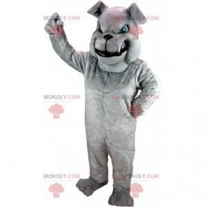 Šedý buldok maskot hledá ošklivý, šedý kostým psa -