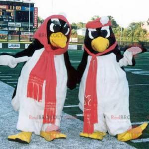 2 mascotte di pinguini in bianco e nero - Redbrokoly.com
