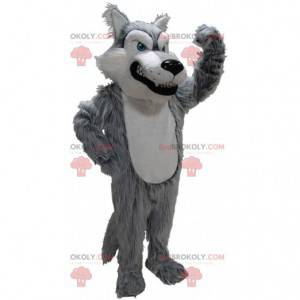 Grå og hvid ulvemaskot, dårligt behåret ulvedragt -