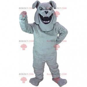 Grå bulldog maskot ser voldsom, ond hundedrakt - Redbrokoly.com