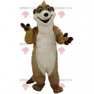 Mascote Meerkat, animal do deserto, fantasia de mangusto -