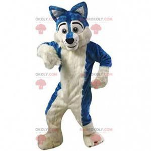 Blue and white dog mascot, plush husky costume - Redbrokoly.com