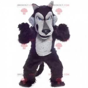 Czarno-szara maskotka wilk, pluszowy kostium wilka -