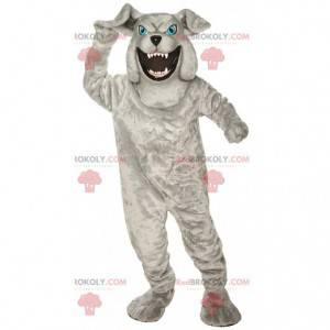 Šedý buldok maskot hledá divoký kostým zlého psa -