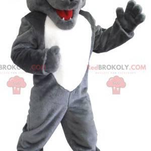 Mascotte lupo grigio e bianco - Redbrokoly.com