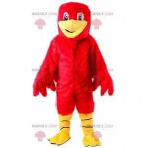 Chlupatý červený pták maskot, velký barevný ptačí kostým -