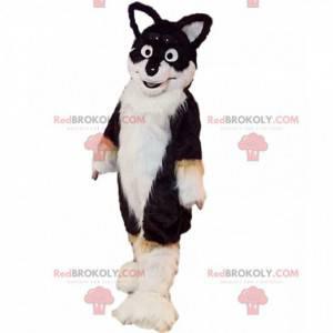 Maskot tříbarevný husky pes, kostým chlupatého psa -