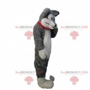 Soft and hairy gray and white dog mascot, dog costume -