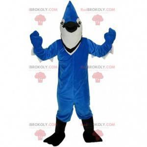 Maskot modré a bílé sojky, krásný barevný kostým ptáka -