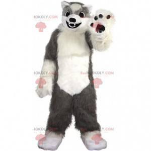 Myk og hårete grå og hvit hundemaskot, ulvdrakt - Redbrokoly.com