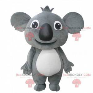 Gigante e commovente mascotte koala grigio, koala peluche -