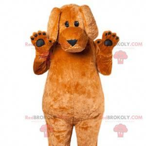 Hnědý pes maskot dotýká disketové uši - Redbrokoly.com