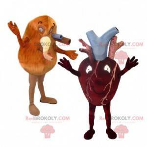 Srdce a plíce maskot duo a jejich tepny - Redbrokoly.com