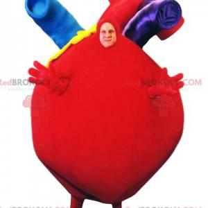Gigantyczna maskotka z czerwonym sercem z pięknymi tętnicami -