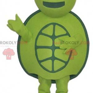 Grøn skildpadde masotte og rundt, - Redbrokoly.com