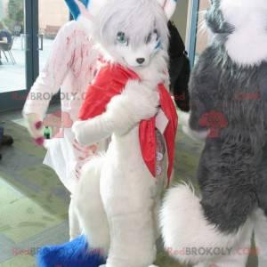 Charmantes und haariges weißes und blaues Katzenmaskottchen -