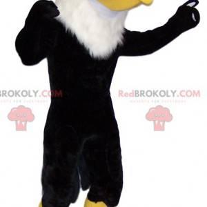 Black golden eagle mascot. Golden eagle costume. -