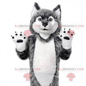 Mascote do lobo cinzento. Fantasia de lobo cinzento -