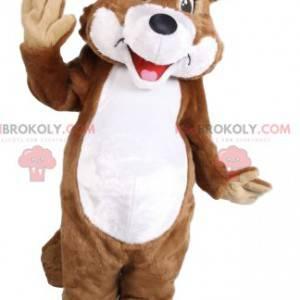 Braunes und weißes Wolfsmaskottchen. Wolfskostüm -