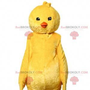 Mascote de pintinho amarelo. Fantasia de garota amarela -