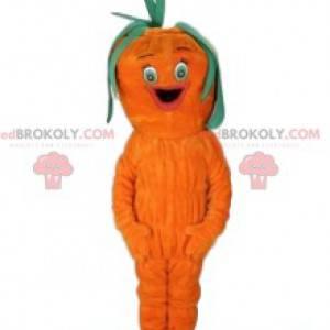 Mascote da cenoura. Fantasia de cenoura - Redbrokoly.com