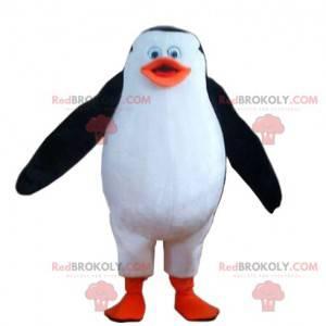 Mascote pinguim engraçado. Fantasia de pinguim - Redbrokoly.com