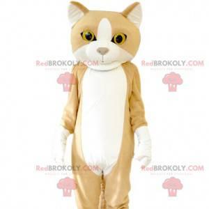 Cat mascot with beautiful yellow eyes. Cat costume -