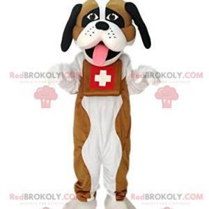 Mascot of Saint Bernard. Costume of Saint Bernard. -