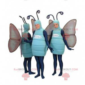 Blaues Schmetterlings-Maskottchen-Trio. Schmetterlingskostüm -