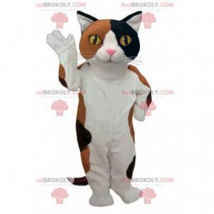Sehr erfolgreiches schwarz-braun-weißes Katzenmaskottchen -