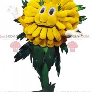 Cute yellow dandelion mascot. Dandelion costume. -